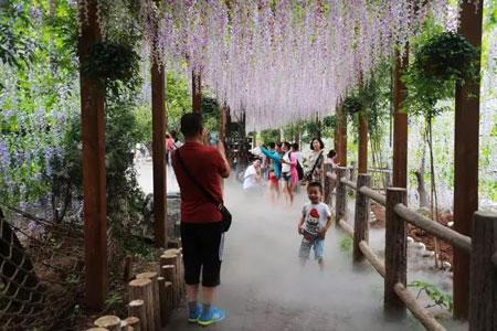 云台山红石峡紫藤长廊照片