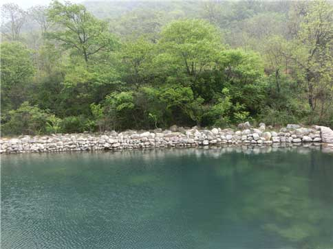 云溪谷清澈的河水