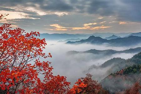 云台山秋季旅游攻略,红叶赏不停